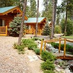 Bilde fra Silverwolf Log Chalet Resort