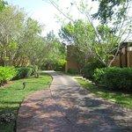 Pretty path from main hotel to villas