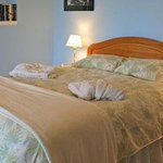 Cape Cod Bed & Breakfast Foto
