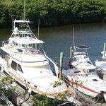 the Aqua Marine fleet