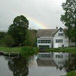Taraden Rainbow