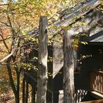 Oak Crest Cottages and Treehouses-billede