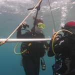 Guillaume helping my wife through the basic skills - Intro to Diving Experienc