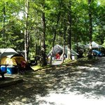 Linville Falls Campground Image