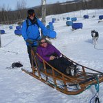 Dogsledding at Appalaches Lodge Spa Villegiature