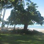 Main beach.