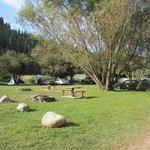 Imagen de Wolf Lodge RV Campground