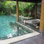 their public pool with minibar