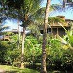 Roatan Vista Villas Photo