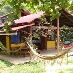 Foto de Jungle Lodge