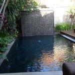 pool (Acacia)