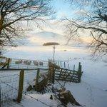Abington on a beautiful snowy day