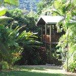 Cairns Rainforest Studios Photo