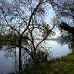 ...la Loire...une splendeur//vue de la propriété..