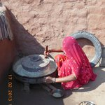 Bishnoi village woman grinding grain