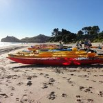 Cathedral Cove Kayaking Tours