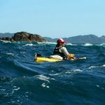 Our Guide for Cathedral Cove Kayaking Tours