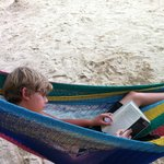 book in the hammock
