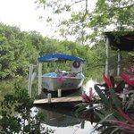 Tour boat at coconut plantation