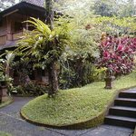 Tiing Gading Bungalows Photo