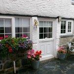 Ginentonic Cottage