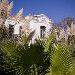 Bilde fra Casa Grande