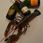 bogavante vs champagne