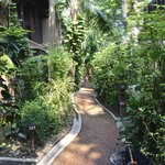 Pathway to our room