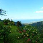 Photo de Pura Vida Gardens and Waterfalls
