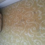 carpet...