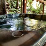 Wildberry Cottage Hot Tub...just say ahhh