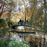 Grounds For Sculpture Monet Garden