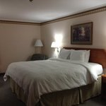 King room at Hampton Portage