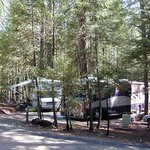 Pinewood Cove RV Park and Campground ภาพถ่าย