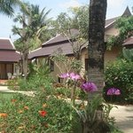 Thup Thong Guest House and Bungalows Bild
