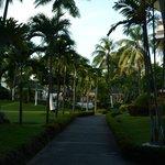 Waterfront Insular Hotel