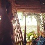 hammock in the cabana