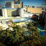 Garden/pool view