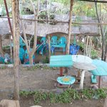 Foto de Strawberry Fields Eco-Lodge