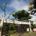 Tobago Cocoa Estate, Tobago W.I.