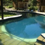 cashew shaped pool