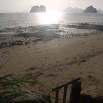 Dodgy  Beach