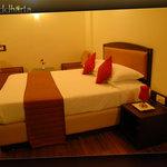 HOTEL SIDDHARTA  DLX ROOM