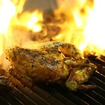 Fire Grilled Chicken