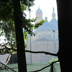 St Anthony's Basilica, as seen from Orto Botanico Garden