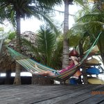 hammock at the pool