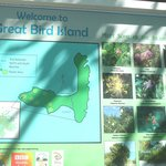 Bird Island inhabitants