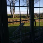 view from bedroom x