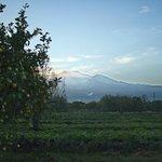view of Etna at dusk