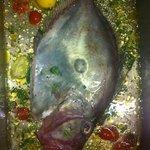 Pesce San Pietro